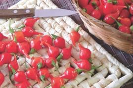 Pimenta Biquinho Vermelha 2,5g - aprox. 500 sementes