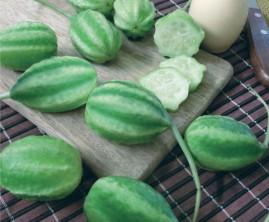 Maxixe Liso Gibão 10 g sementes