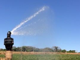 Aspersor autocompensante para irrigação bocal verde 550 L/h