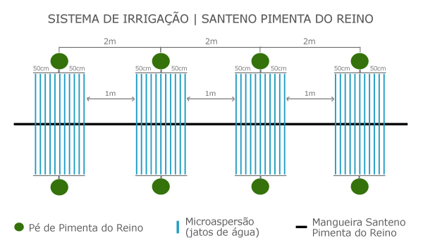 santeno-pimentadoreino-1.jpg
