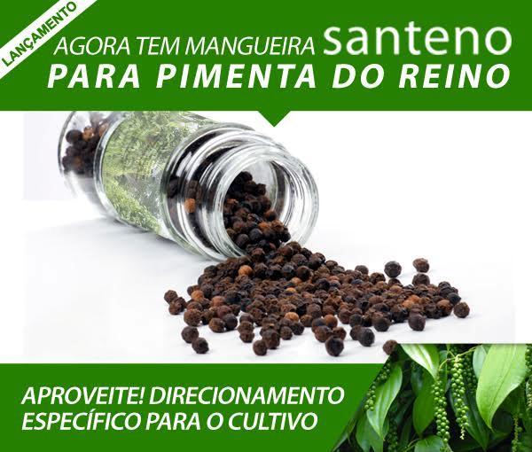 santeno-plus-topo.jpg