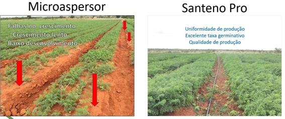 santeno-pro-versus-aspersor.jpg